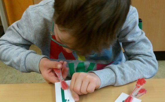 Alexander: Mathematik im Februar 2019